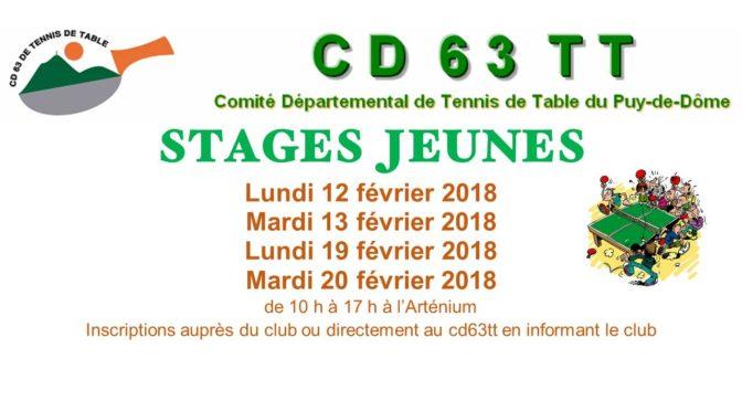 Stage jeunes
