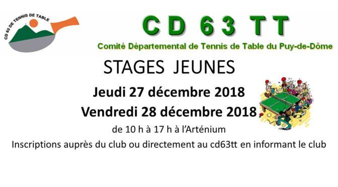 Stages Jeunes de Noël
